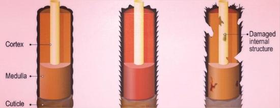 espectacolor tinte sin amoniaco